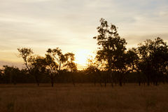 Sunset at Oyala National Park stock photos