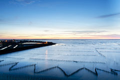 Sunset on oyster rack Royalty Free Stock Photo