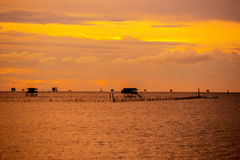 Sunset in Oysters Farm Stock Image