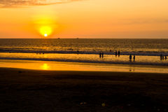 Sunset on Pacific coast of Ecuador Stock Image