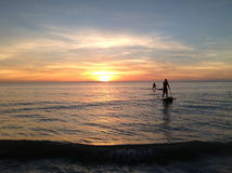 Sunset Paddle. Two Paddle Boarders coming in to shore with the sun setting behind them Stock Photos
