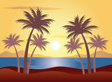 Sunset on the palm beach. Vector illustration Royalty Free Stock Photo