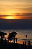 Sunset at the palm beach Stock Photography