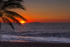 Sunset at Palm beach. In a beautiful sommerday Royalty Free Stock Photos
