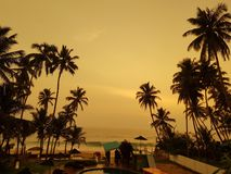 Sunset on the palm beach of the Indian Ocean royalty free stock images