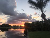 Sunset in palm beach. Pal trees leaning into a sunset with clouds and orange setting sun Stock Photos
