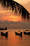 Sunset with palm and boats on tropical beach. Sunset with palm and longtail boats on tropical beach. Ko Tao island, Thailand Stock Photo