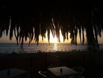 Sunset palm fiumefreddo. A magic sunset at fiumefreddo del bruzio in south italy royalty free stock photo
