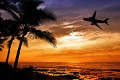 Sunset with palm tree and airplane silhouettes Royalty Free Stock Images