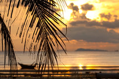 Sunset with palm tree in front and  defocused boat Stock Image