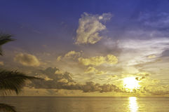 Sunset with palm tree, Phu Quoc, Vietnam. Sunset with palm tree at South Chinese Sea in Phu Quoc, Vietnam Stock Photos