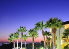 Sunset with palm trees. Royalty Free Stock Images
