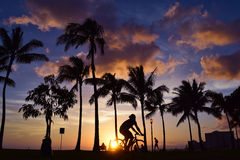 Sunset and Palm Trees, Oahu Hawaii. Relaxing sunset at the Fort Derussey Park in Oahu Royalty Free Stock Images