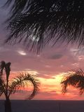 Sunset through the palm trees. Paphos sea front Stock Photo