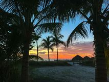 Sunset through the palm trees with view of Gulf of Mexico and sun shelter. stock photos