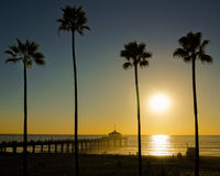 Sunset with palm trees. Winter Sunset from Manhattan Beach Pier with silhouette palm trees Stock Photography