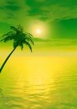 Sunset_Palm_V Royalty Free Stock Photos
