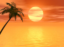 Sunset Palm2. Coconut palm tree  on a sunset beach - 3d illustration Royalty Free Stock Photography
