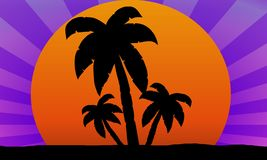 Sunset and palms illustration Stock Images