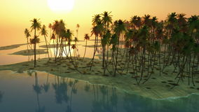 Sunset and palms at ocean stock video footage