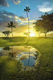 Sunset with Palms and Pond in Maui Hawaii royalty free stock image