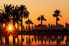 Sunset and palms in resort Stock Photography