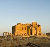 Sunset in Palmyra Royalty Free Stock Photo