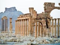 Sunset in Palmyra Stock Image