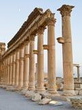 Sunset in Palmyra Royalty Free Stock Photos