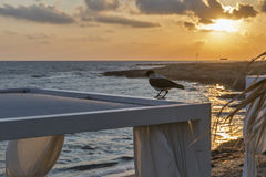 Sunset at a Paphos beach, Cyprus Royalty Free Stock Images