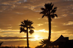 Sunset in Paradise. Sunset on a tropical island with palmtrees and a hut royalty free stock photography