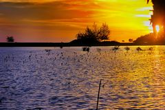 Sunset paradise beach mangrove sea. Sunset paradise beach mangrove mangrovesea royalty free stock photos