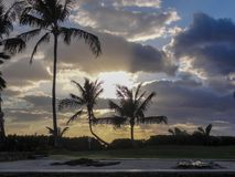 Sunset a Paradise Cove. Setting sun behind palm trees on the island of Ohau in Hawaii Royalty Free Stock Photography