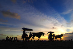 Sunset at Parang Tritis Beach. Horses provided for Tourists at Parang Tritis Beach Yogjakarta. Tourist pays for IDR 30,000 for 15 minutes trip along the beach Stock Images