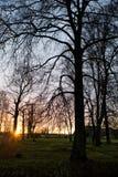 sunset park Obrazy Stock