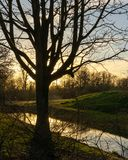 Sunset in a Park in Amsterdam on a cold winter day stock photos