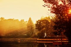 Sunset in the Park. The lake in the Park. Sunlight through the trees stock photography