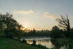 Sunset in a park over looking a lake Stock Photography