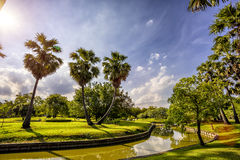 Sunset in park with palm trees and sawamp, green grass Royalty Free Stock Photography