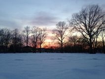 Sunset in a Park in Snow in Winter. Royalty Free Stock Images