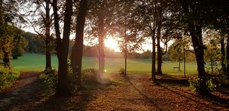 Sunset in the Park royalty free stock image