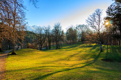 Sunset in park with trees and green grass, Alps in the background. Fussen, Germany. Stock Image