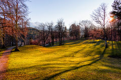 Sunset in park with trees and green grass, Alps in the background. Fussen, Germany. Royalty Free Stock Photo