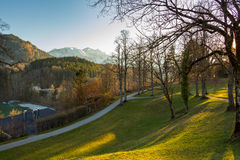 Sunset in park with trees and green grass, Alps in the background. Fussen, Germany. Royalty Free Stock Image
