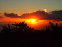 Sunset past tropical silhouette of trees through the clouds over Royalty Free Stock Image