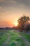 Sunset path Stock Images