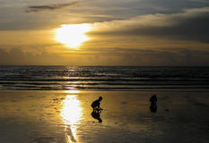 Sunset at Patong Beach Stock Photography