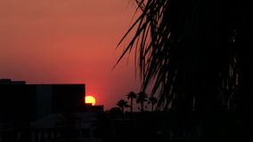 Sunset Peeking Out from Behind a Building. Shot of the last minutes of the sun setting behind a building with palm trees in the distance and a tree in the stock video footage