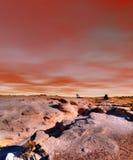 Sunset Petrified Forest Arizona Royalty Free Stock Photos