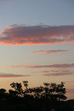 Sunset photo as background In Ebro Delta Royalty Free Stock Photos